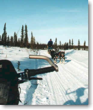 Alaskan Trails