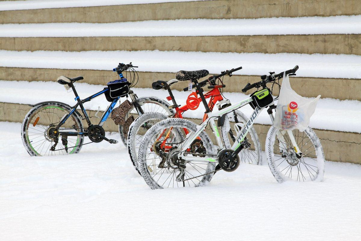 Parked mountain bikes