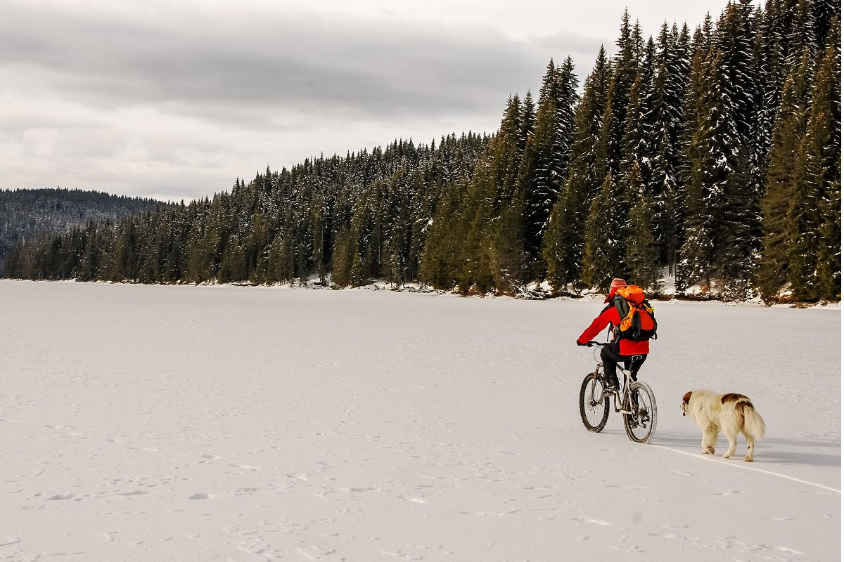 Cycling in the nature during the winter