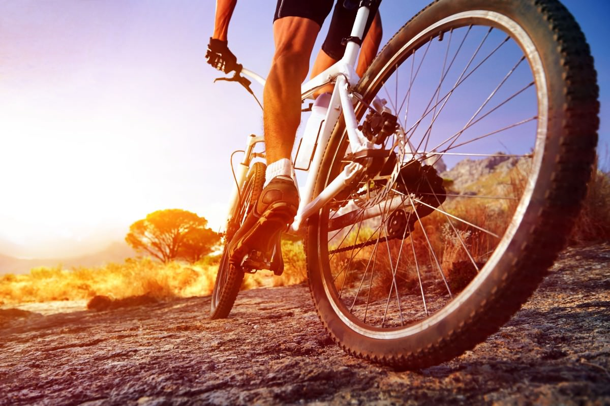 Cyclist riding on mountain trail