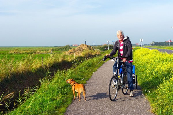 How To Choose a Dog Carrier or Dog Trailer For Your Bike