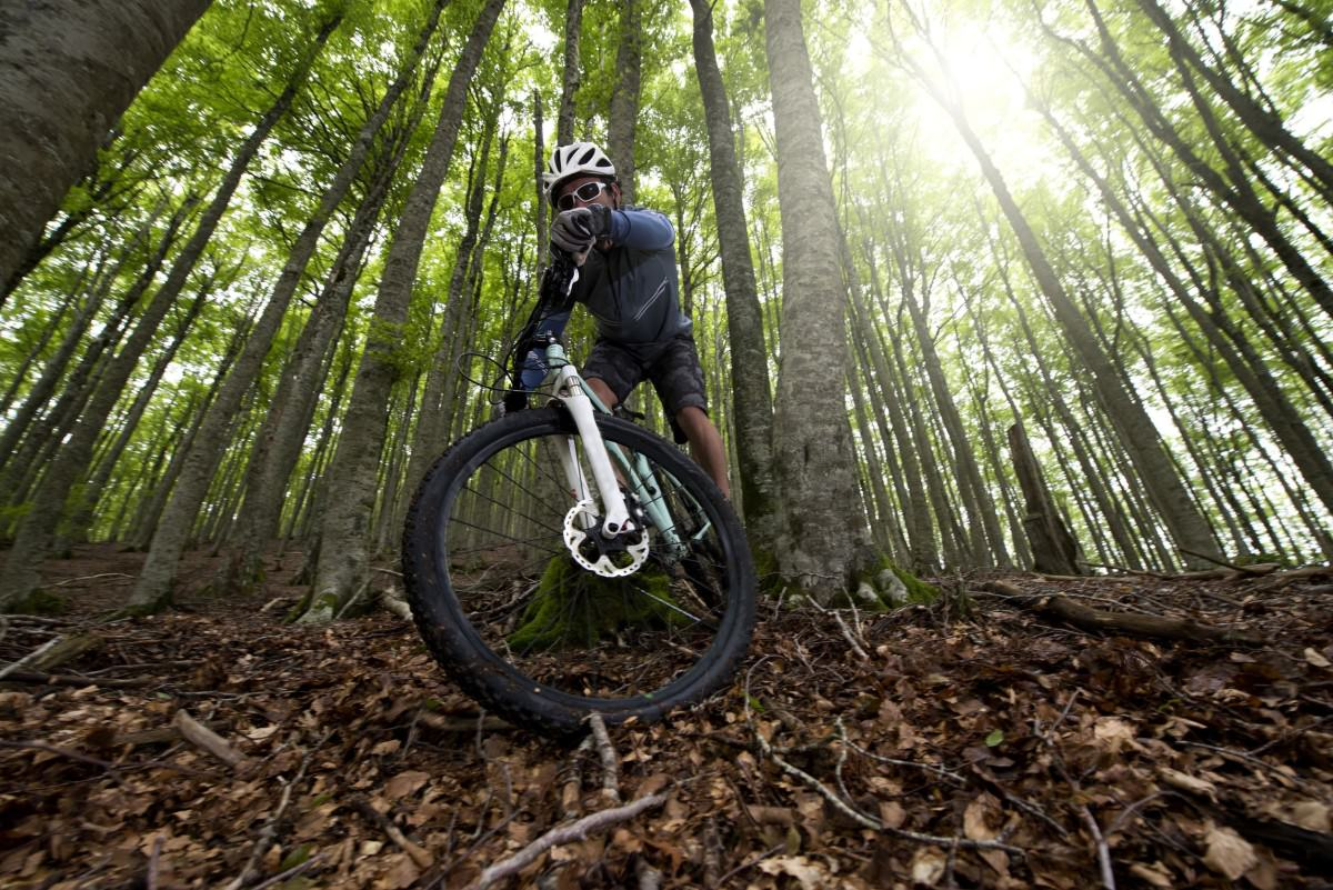 Freestyle mountain bike action
