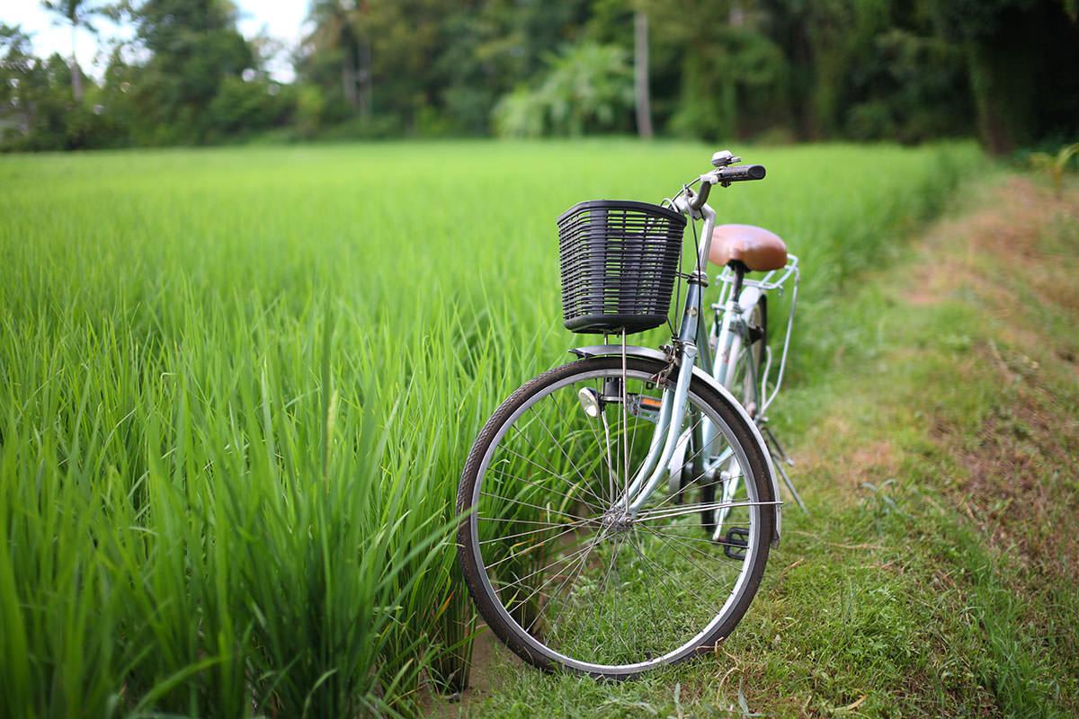 Bike near grass field