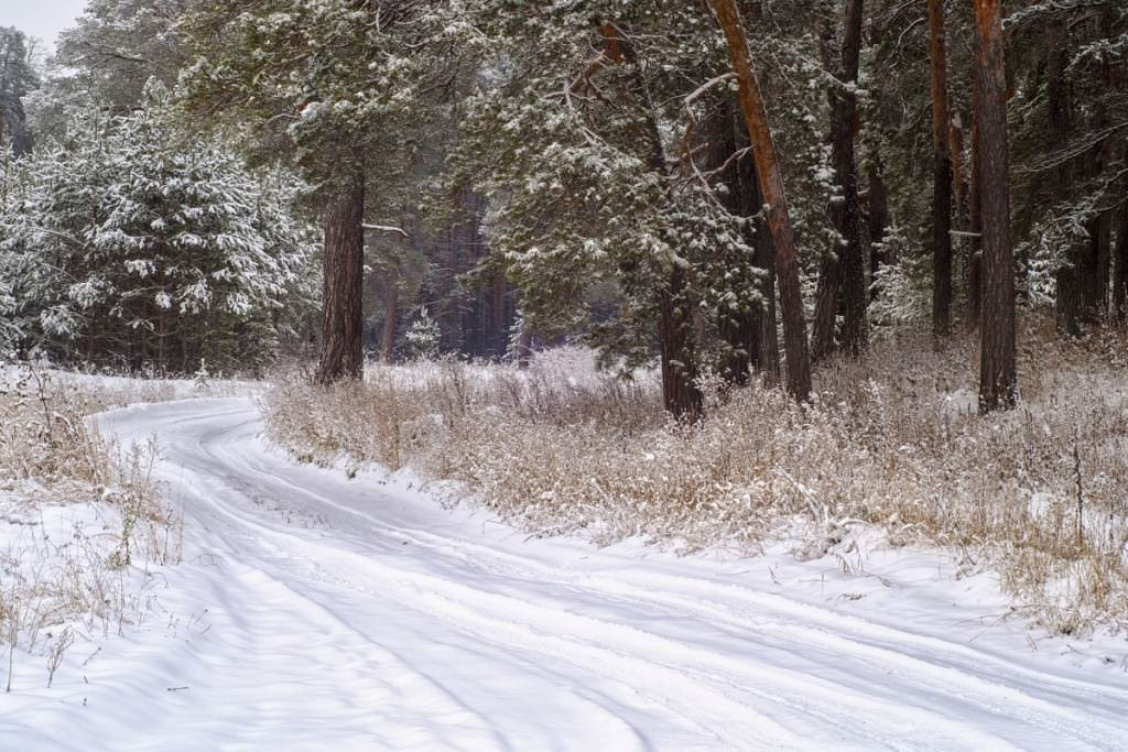 Road with snow on