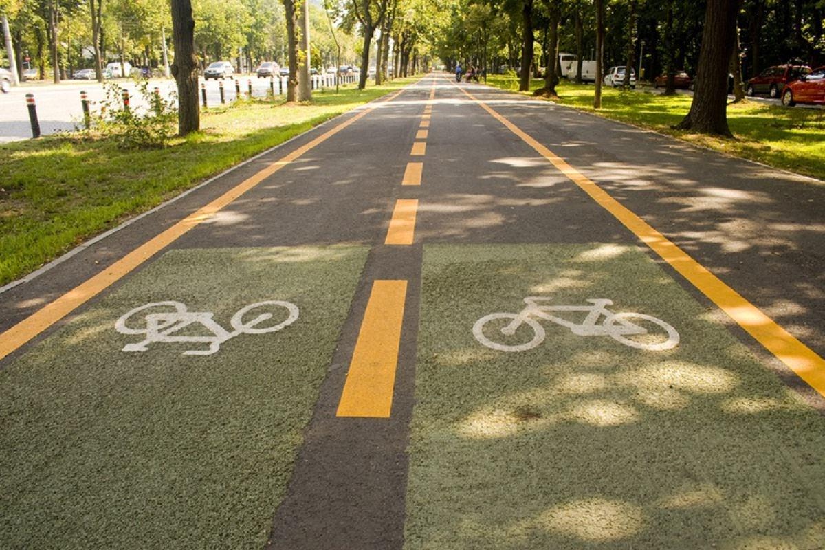 Bike lanes marked on street