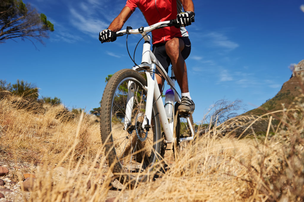 my cas diary mountain bike riding essay After reading bike notebook the reader will walk away with a personal bike riding safety strategy and rugged enough to travel mountain trails.