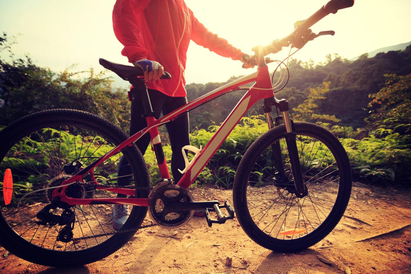 Holding a mountain bike