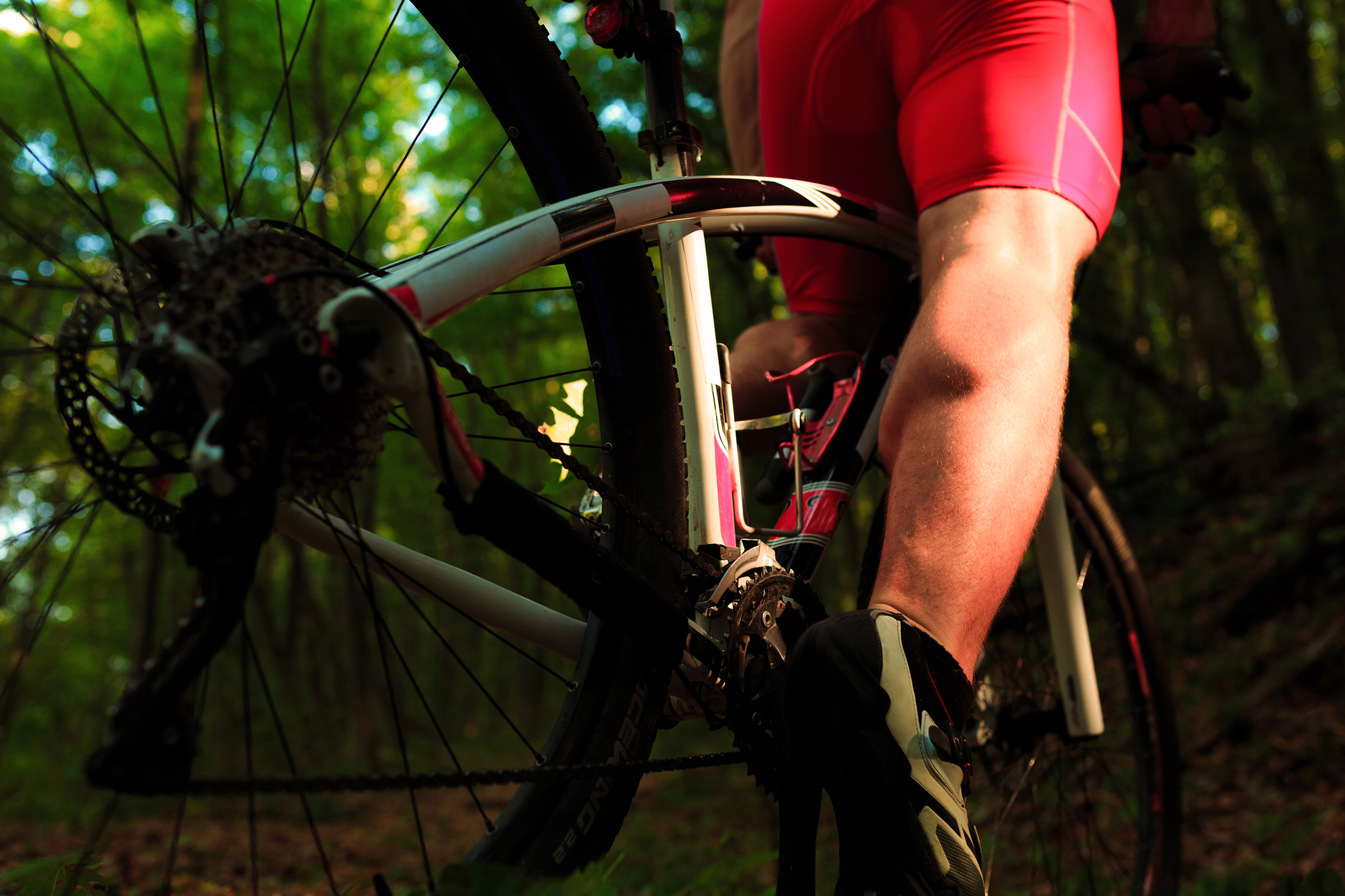 wheels on a mountain bike