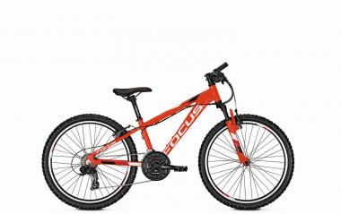 Read Focus Raven Carbon Bike Review And Compare Prices