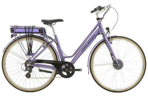 Raleigh Pioneer E Lowstep 2018 Electric