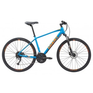 Giant Roam 2 Disc 2019