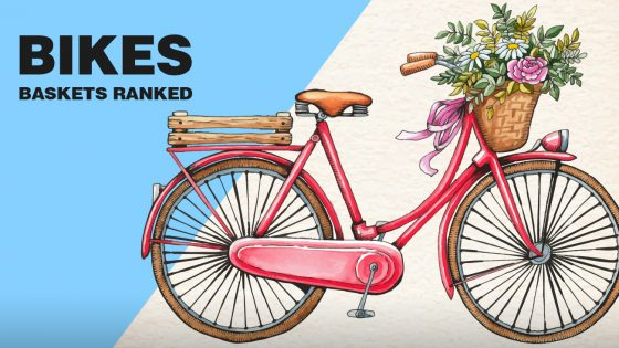 Best Bike Baskets Reviewed And Ranked